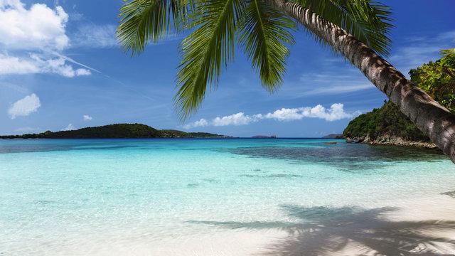 Bild aus Karibik